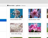 thumb_1336_a764b8c5b481022326e1e13956bf29a8 گالری همه کاره عکس و فایل جوملا با FILEman  - گلچین آنلاین