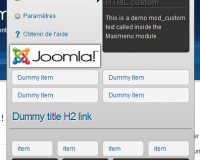 thumb_1351_ce76e40169416a11844b76eb9cfa8db5 گلچین آنلاین - ساخت مگامنوی حرفه ای با Maxi Menu CK نسخه تجاری
