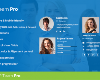 thumb_1503_2cdad4057003ccb6378ce11d655b3f74 نمایش پروفایل اعضای تیم در سایت با TLP Team PRO - گلچین آنلاین