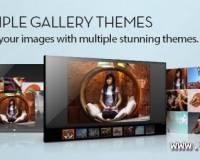 thumb_955_01983548090fe821dc75b1b0c9cf4613 ماژول نمایش تصاویر JSN ImageShow PRO  - گلچین آنلاین
