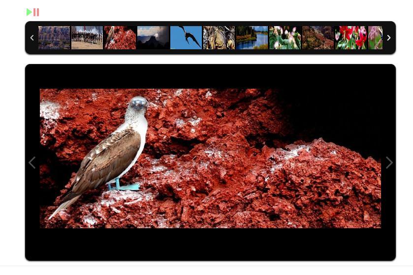 2017-05-31_203321 کامپوننت ساخت گالری تصاویر جوملا RSMediaGallery   - گلچین آنلاین