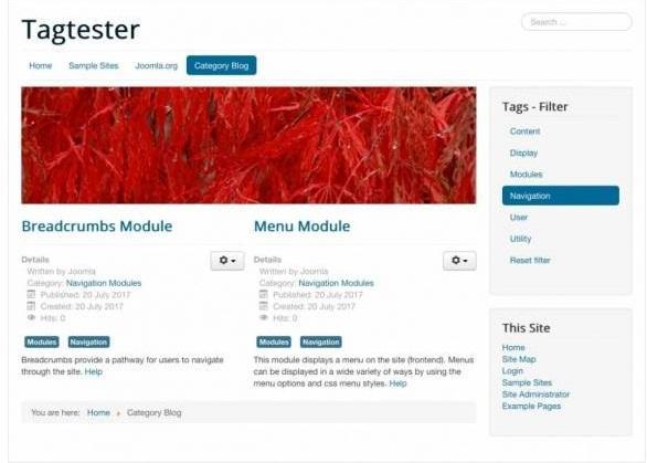 5970aeeeb1510_respx16(1) افزونه جستجو پیشرفته برای جوملا Minitek Live Search - گلچین آنلاین
